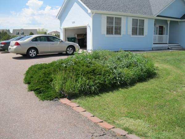 Gardening Cover Photo