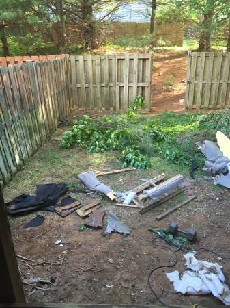 Need Junk And Brush Branches Removed From Back Yard Cover Photo