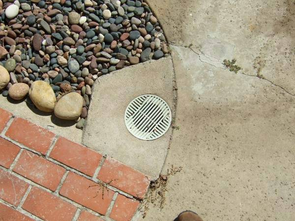 Backyard Drains Rooted cleaned out Cover Photo