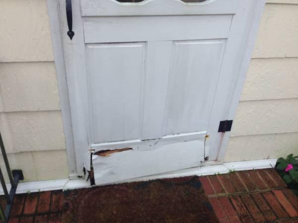 Carpenter  Handyman for Door Repair Cover Photo