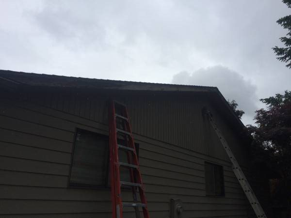 Replace 2 Fascia Boards Cover Photo