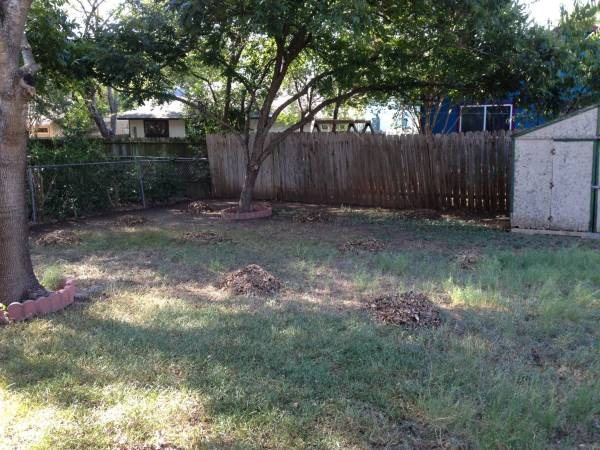 Cost of Chain Link Fence