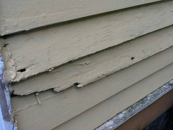 Siding Repair Cover Photo