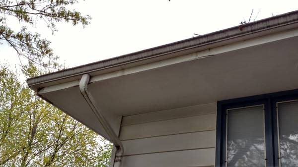 Need Gutters Painted - Insured Preferred Cover Photo
