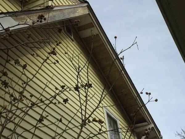 Siding roofing Repair Needed Cover Photo