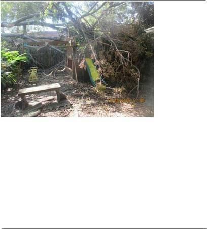 Tree Service Cost