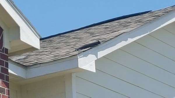 Fix Shingle on Room Have one That is Bent up Cover Photo