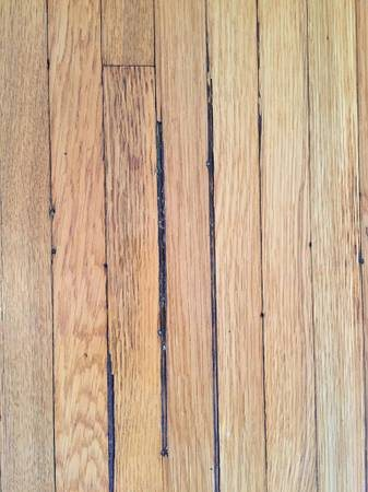 Hardwood Floor Repair Needed Cover Photo