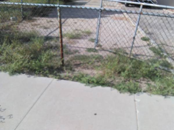 Front Yard Weed Cleaning Cover Photo