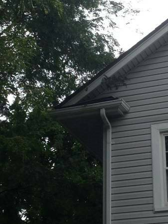 Gutters Need Cleaning And Repair  Cover Photo