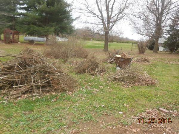Landscape Debris Removal Needed Cover Photo