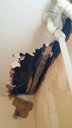 Drywall---Plaster Repair And Painting  Cover Photo
