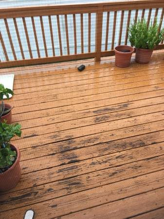 need Deck Washed  Sanded And Painted Cover Photo