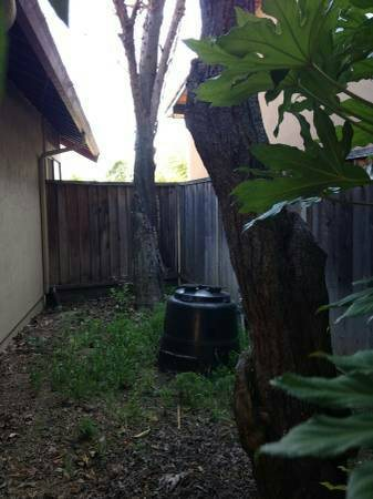 Tree Removal & Trimming Cover Photo
