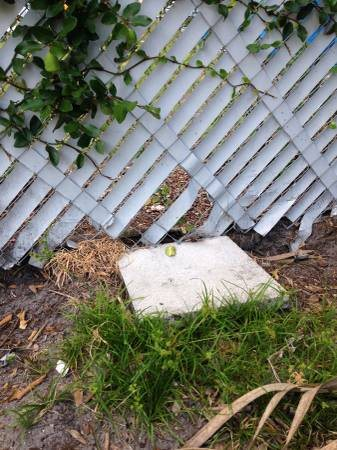 chain Link Fence Repair Cover Photo