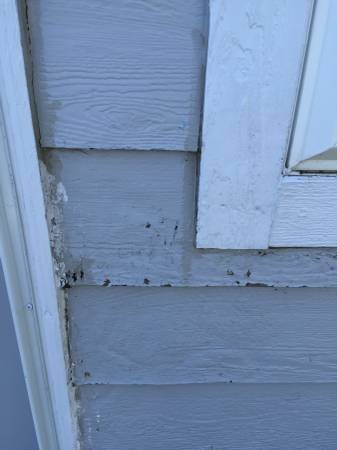 Partial House Siding Replacement Cover Photo