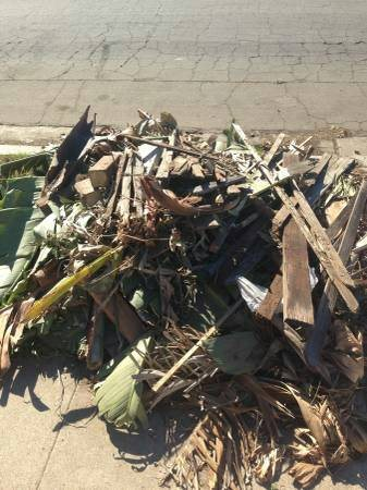 Green Waste Debris Removal Cover Photo