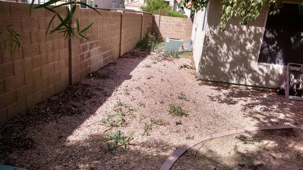 Remove Weeds From Front And Backyard Cover Photo