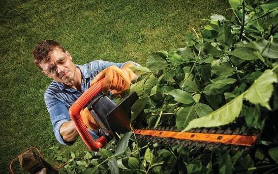 Lawn Mower Care