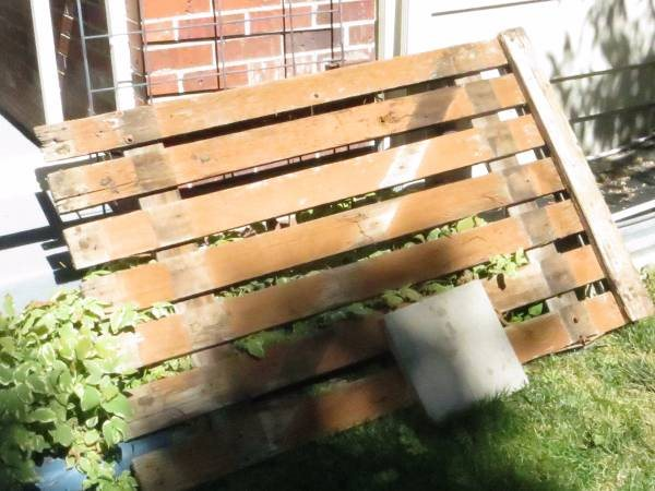 Need To Haul Wood Pavers Cover Photo