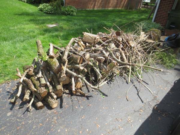 Firewood Pickup Haul Away Cover Photo