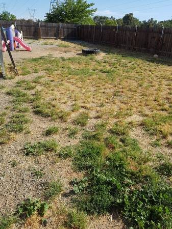 Remove Weeds  Spray  Gravel Cover Photo