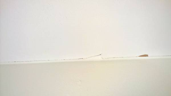 Need Repairs Done In Rental Home Cover Photo