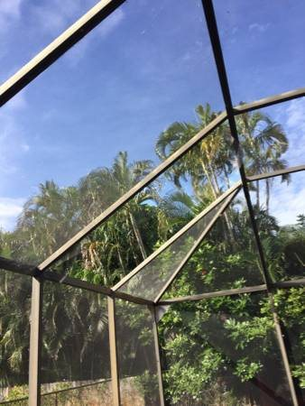 Need Pool Screen Repaired Cover Photo