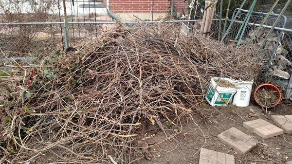 Yard Waste, Cement & Fencing Haul-Away Cover Photo