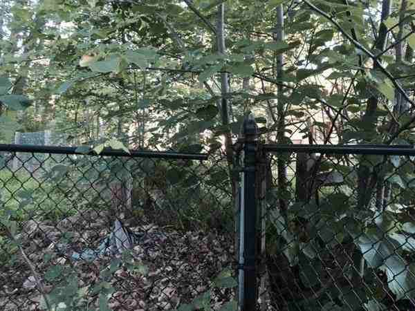CHAIN LINK FENCE GATE INSTALL & RAIL REPLACEMENT Cover Photo