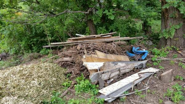 Tree Junk Hauling  Cover Photo