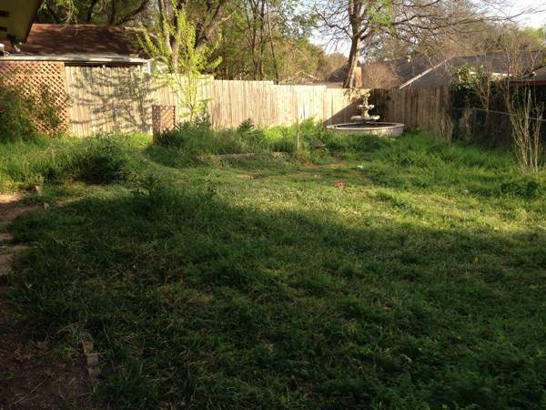 Mow Lawn Cover Photo