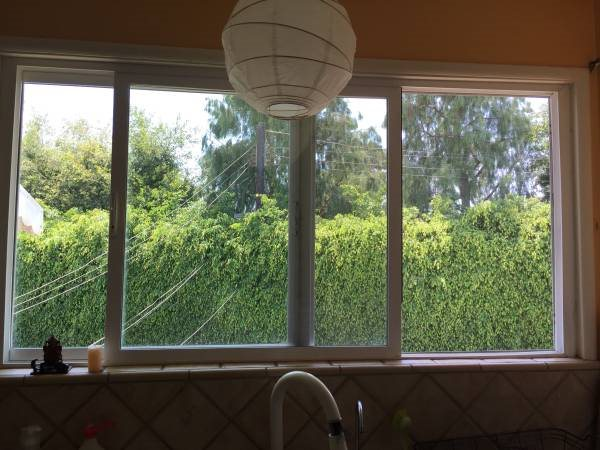 Window Cleaning Forums