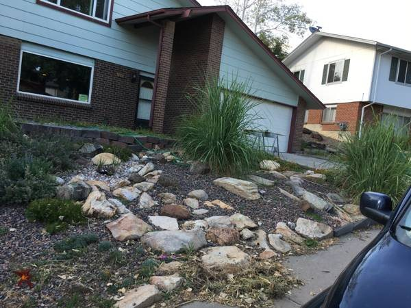 Need Landscaping Done In Front Yard Cover Photo