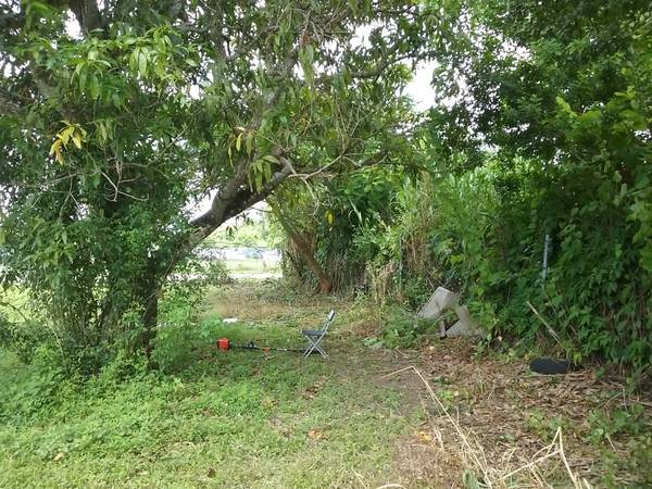 Lot Fence Clearing Cover Photo