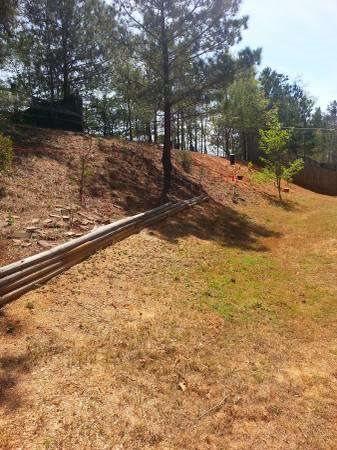 Grade Yard   Remove Tree Stumps Cover Photo