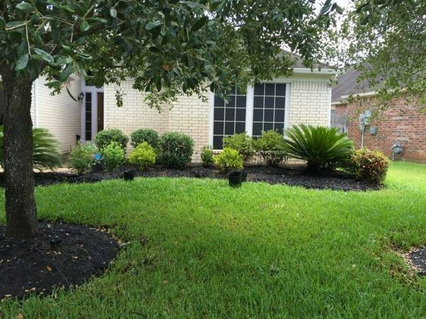 Yard Landscaping  Cover Photo
