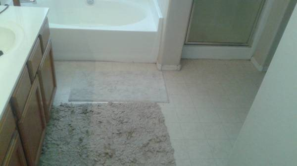 Iso Flooring And Installation For 2 Bathrooms Cover Photo