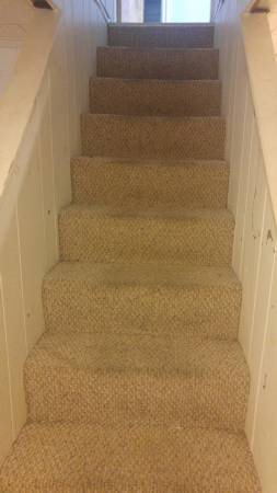 Carpet Cleaning Needed Cover Photo