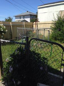 Backyard Landscape Designs on a Budget