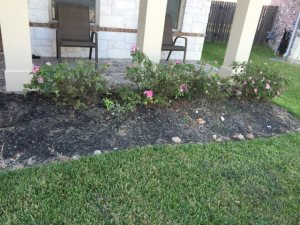 Flowerbed Cover Photo