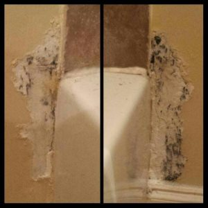 Bathroom Mold Cover Photo