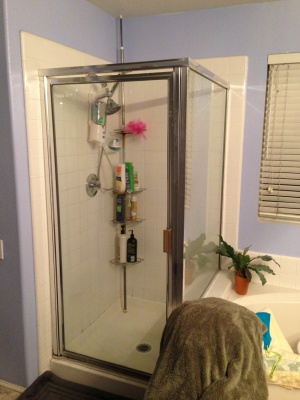 Frameless Glass Shower Cover Photo