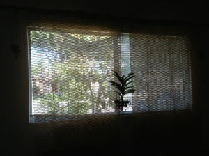 New Bay Window Cover Photo