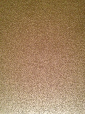 Popcorn Ceiling Removal Cover Photo