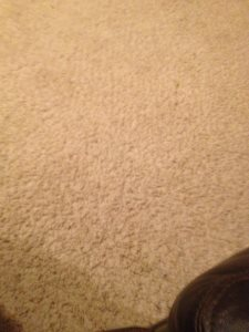 Carpet Installation Cover Photo