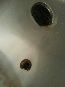 Bathtub Drain Repair Cover Photo