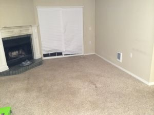 Carpet Removal Cover Photo