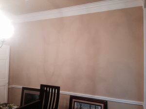 Peel Dining Room Paint  Cover Photo