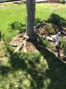 Removal Costs